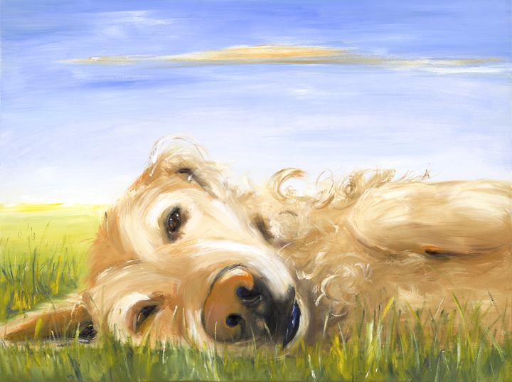 Crosby  The works represented here are samples and are not intended for duplication or print without the expressed permission of the artist. All work is © Kathryn Finney.    10% of the pet portrait profits goes to Autism Speaks.