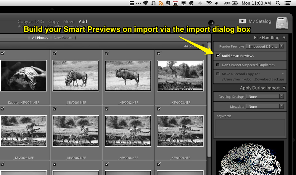 You can create your smart previews right away when you import a new set of photos via the import dialog box