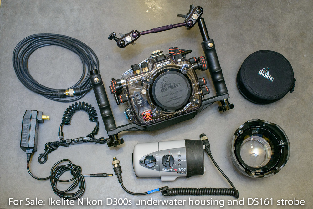 Kit includes: Nikon D300s housing, DS 161 strobe and video light, dome lens port, and strobe extension cable