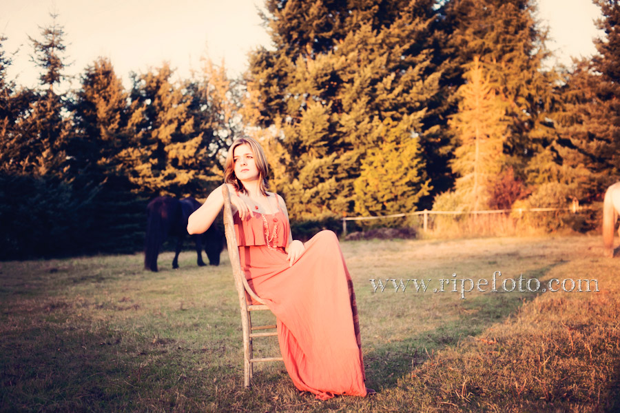 Portrait of teen girl on vintage chair in field of horses by Ripe Photography.