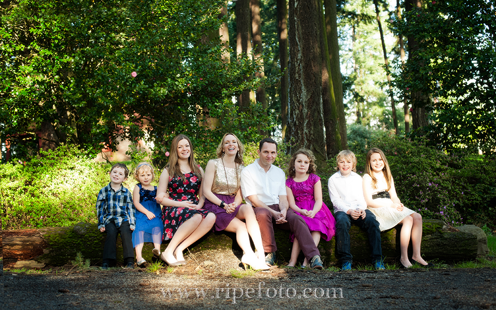 Portrait of family in woods at Sellwood Park by Portland portrait photographer Ripe Photography.