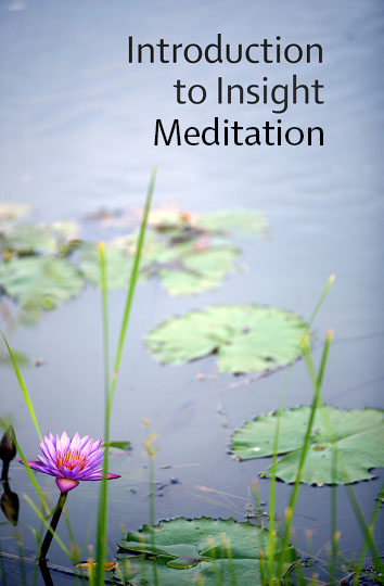 Introduction to Insight Meditation Click to download e-book