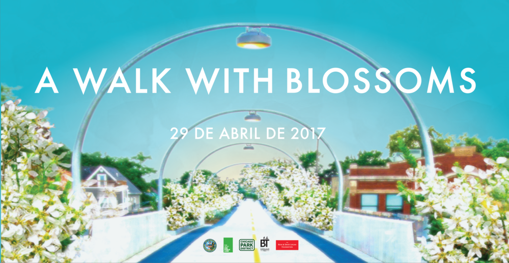 """Acompañanos para una tarde de diversión en """"The 606""""! Del este al oeste, estamos celebrando la llegada de la primavera con """"A Walk with Blossoms."""" Para mas información visita http://www.the606.org/events/a-walk-with-blossoms/"""