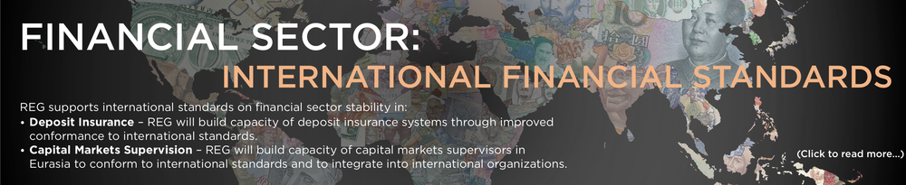 Financial Sector - IFS Banner.png