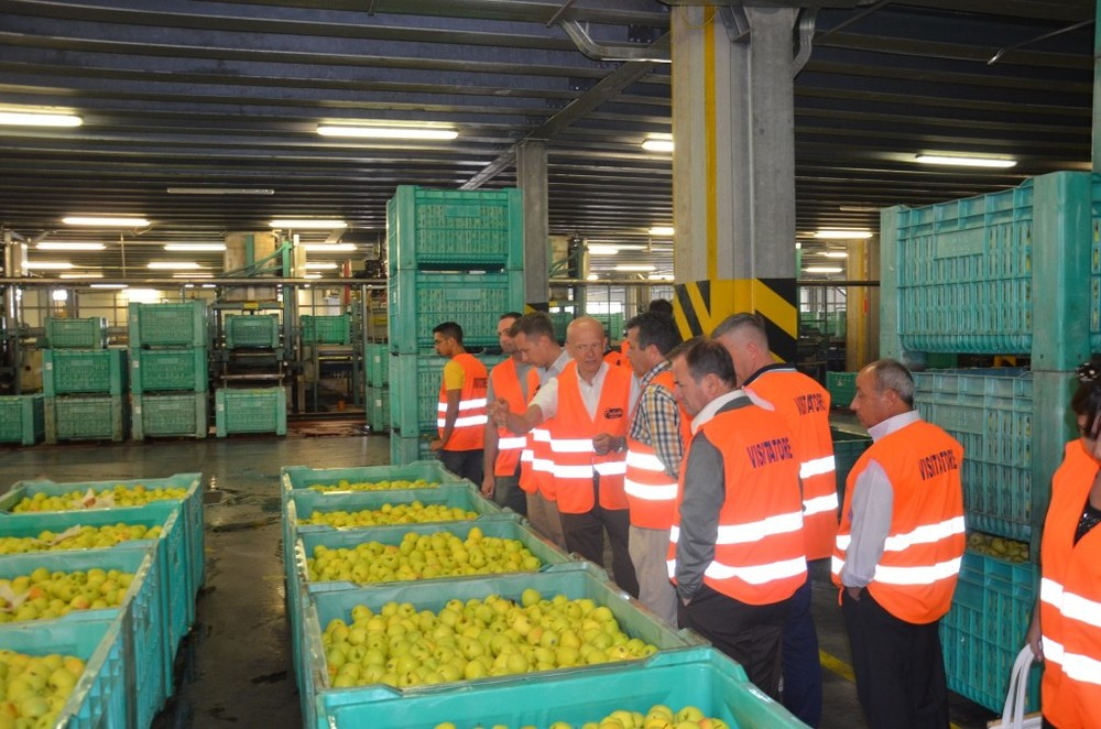 Tour of the produce distribution center.