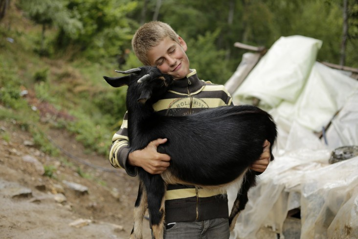 This boy's family herds livestock in the summer in Livadhet e Gjarpërit, Valbona valley, Albania, where they also provide accommodation to trekkers along the Via Dinarica. - Elma Okic