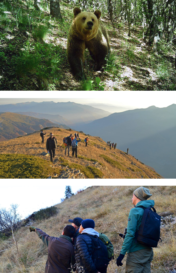 ABOVE (ALL) Tracking the wildlife in Mavrovo and Pelister