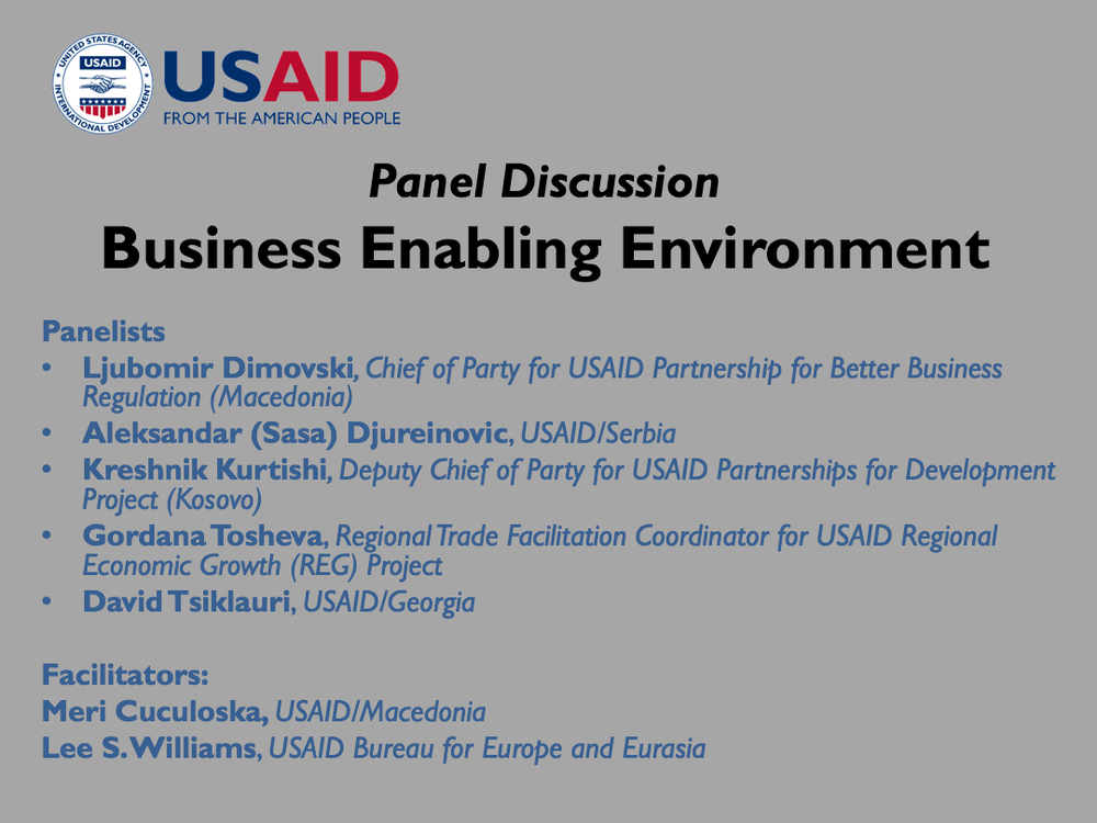 Business Enabling Environment Panel