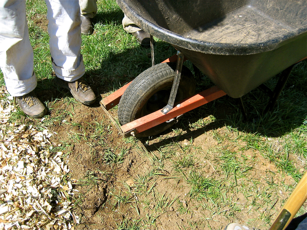 Good boots, a wheelbarrow, and a shovel in use at a community orchard planting in Lexington, Kentucky