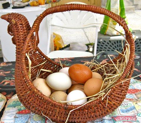 Fresh eggs at the Farmers' Fair, Covington, Kentucky