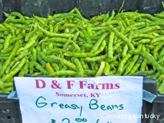 Kentucky Greasy Beans at $2/pound on 8-14-10