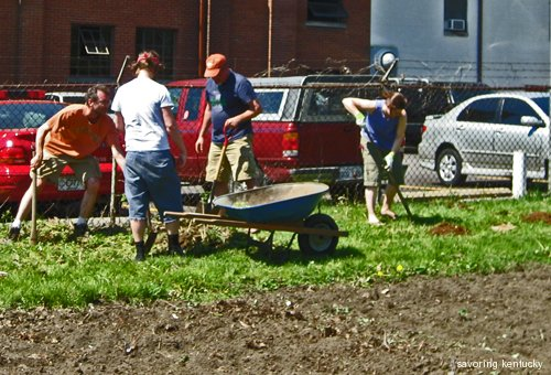 Neighbors and Volunteers from Around the USA Plant New Fruits