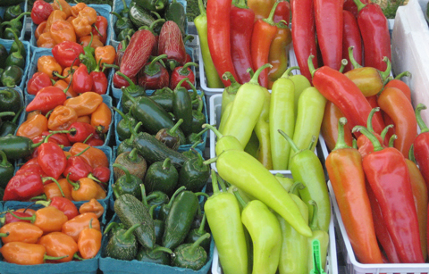 Exquisite summer peppers from McMaine Farm, KY