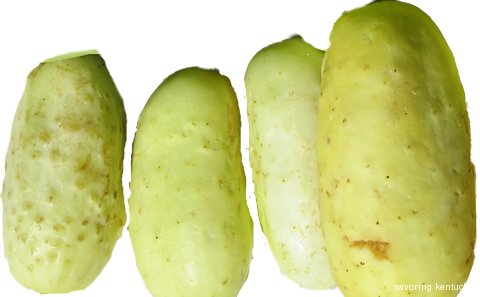 White Heritage Cucumbers from Portsmouth Market