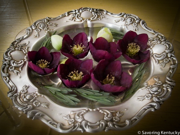 Hellebores and lavender from the Campsie garden, February, 2012