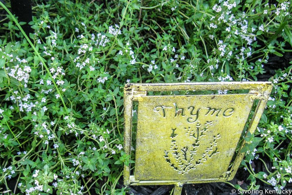 herbs3-3.jpg