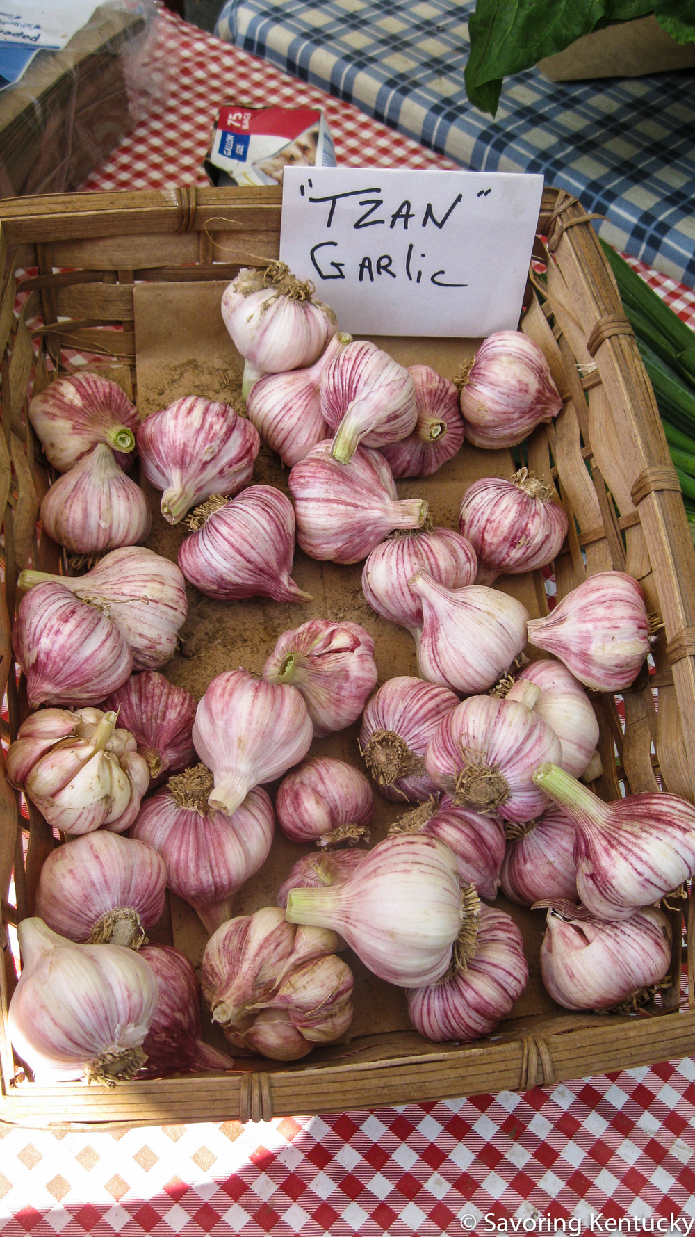 Beautiful new garlic