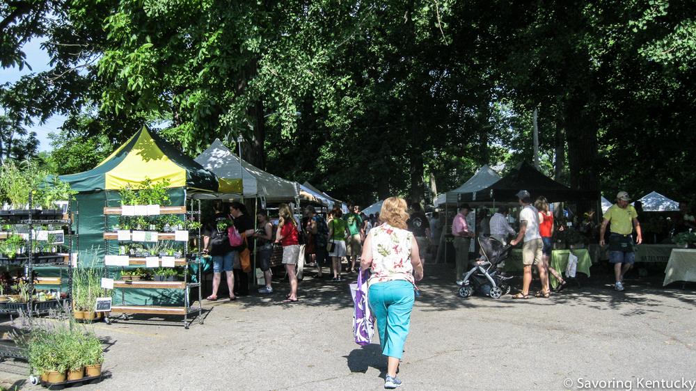 Douglass Loop Market: In a leafy grove