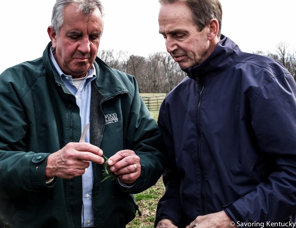 Mac Stone, left, of Elmwood Stock Farm, talks grass with David Wilson