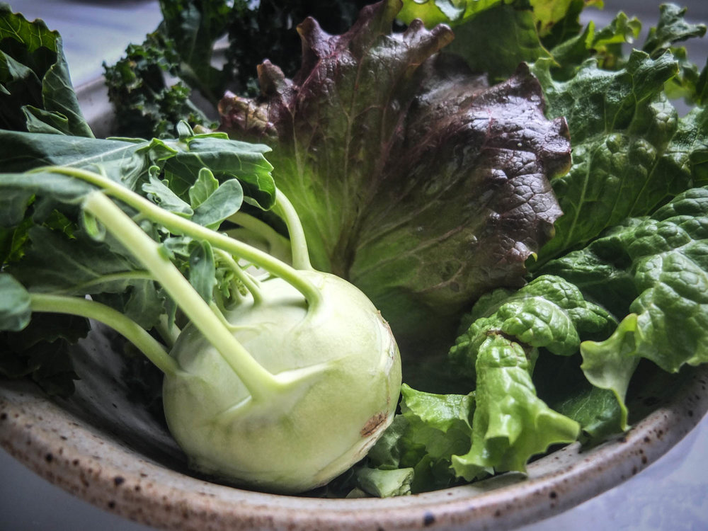 Kentucky spring greens and kohl rabi