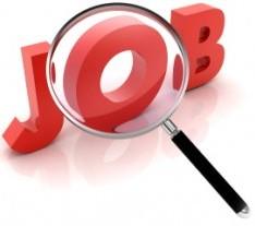 Job-300x299.jpg