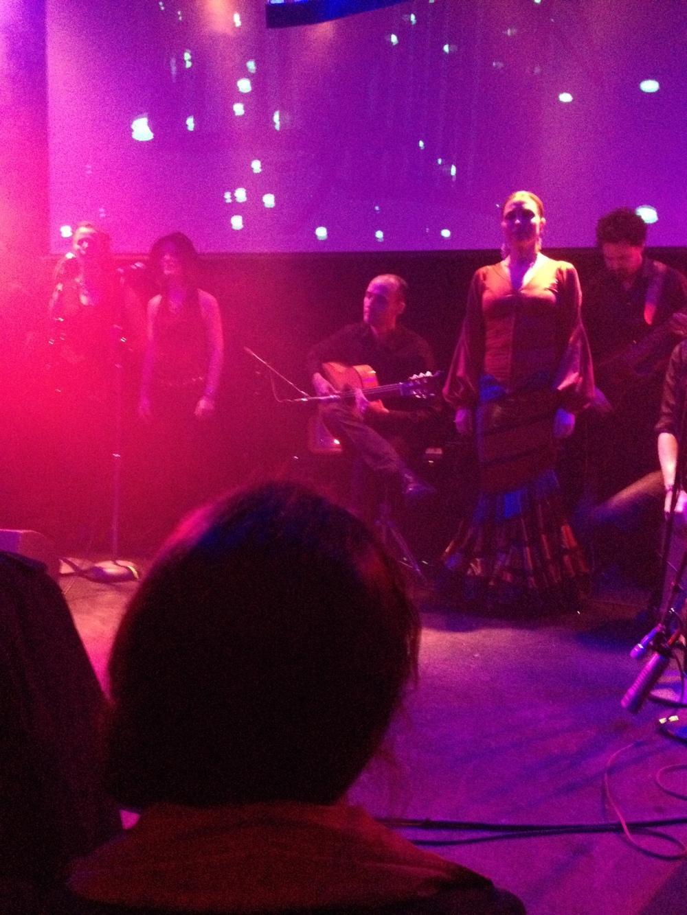 Flamenco dancer! Told you so.