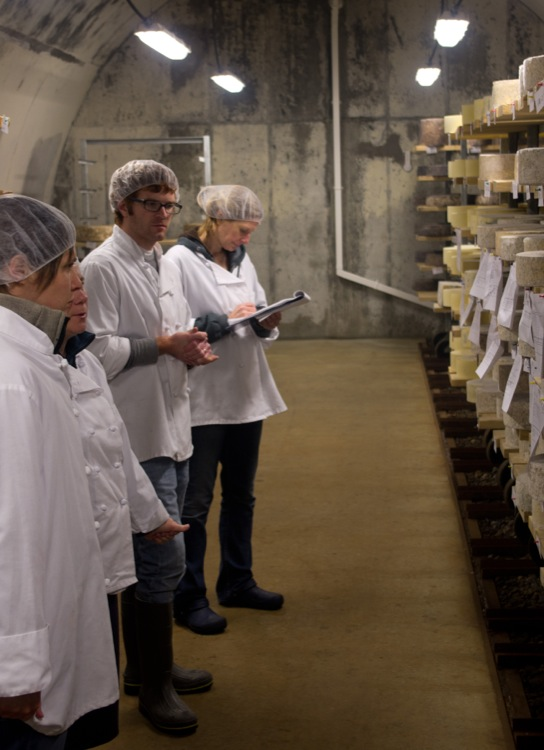 Our tasting team evaluates the trajectory of aging cheeses and determines when and where each batch will be shipped.