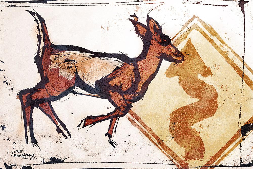 Suburban Deer 6