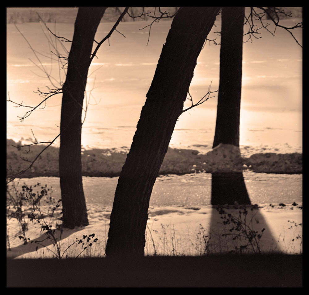 Lake_Calhoun_Trinity_Trees_web.jpg