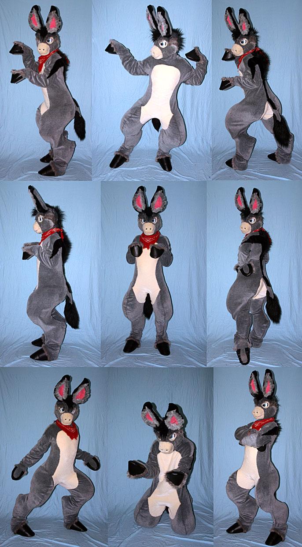 donkey9upweb.jpg