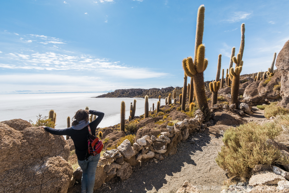 Looking Across The Salt Flat, Uyuni, Bolivia
