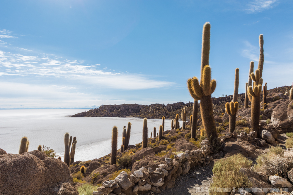 Island In The Salt Flat 3, Uyuni, Bolivia