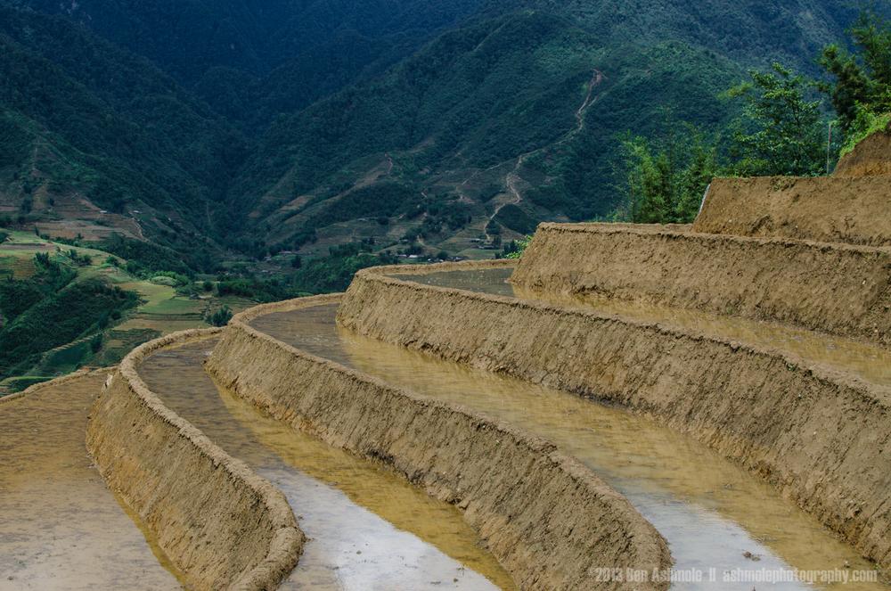 Virgin Rice Terraces, Sapa, Vietnam