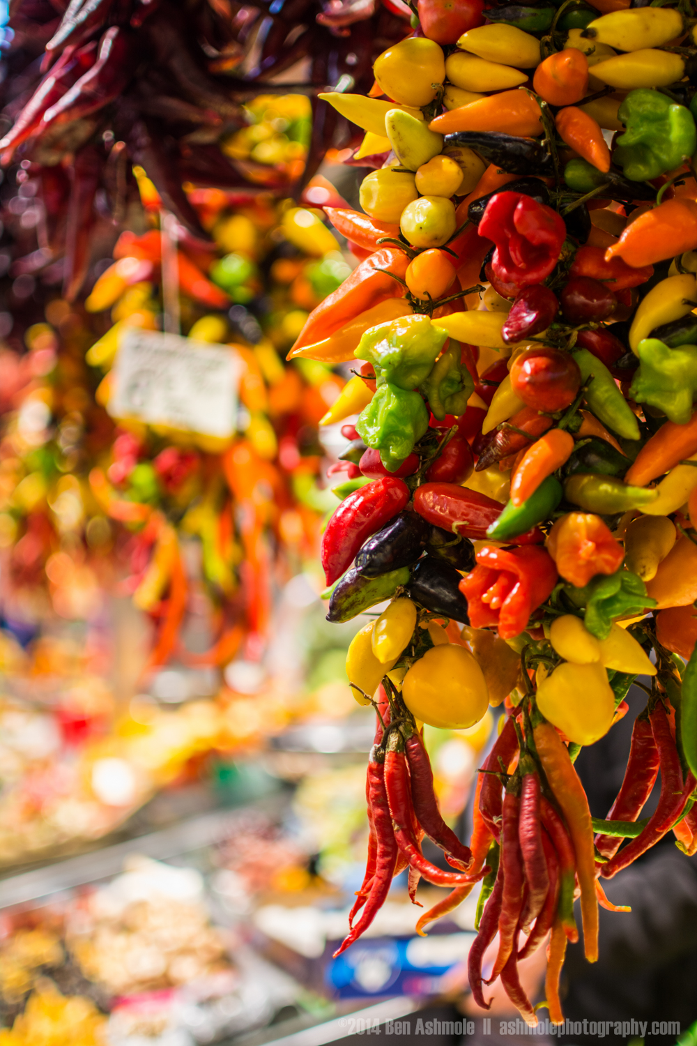 Hanging Chilli Peppers 3, La Boqueria, Barcelona, Spain