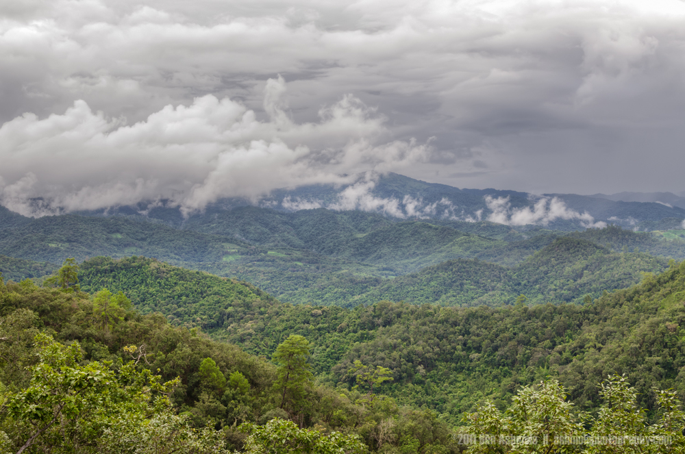 Jungle Storm, Chiang Mai, Thailand, Ben Ashmole