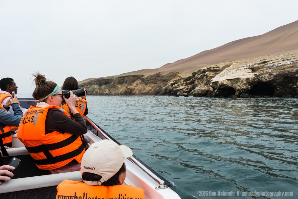 Ballestas Islands-0215.jpg