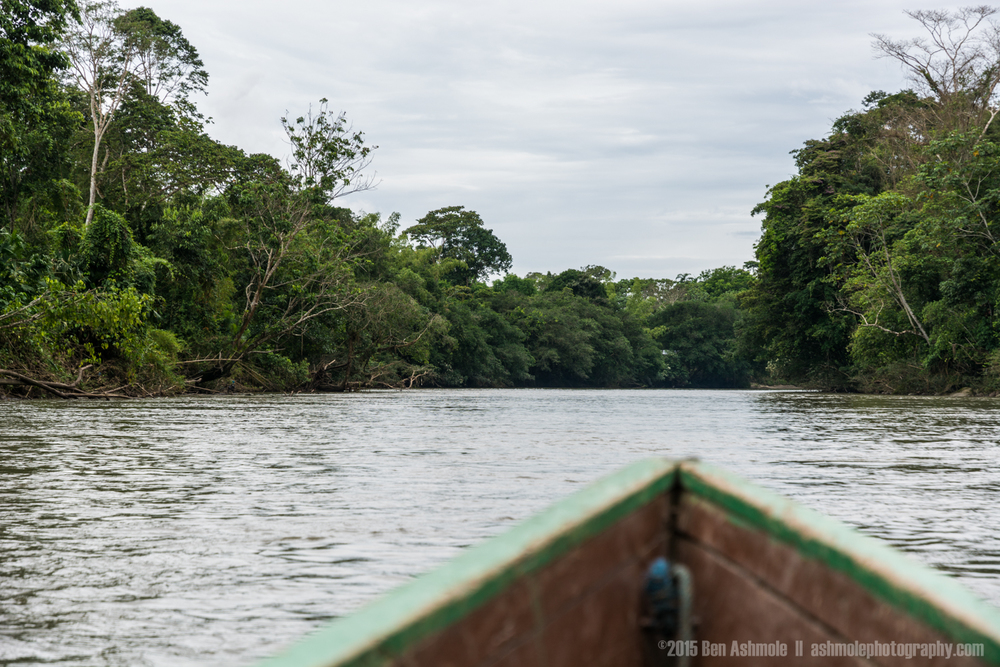 Boat Ride 2, Amazon Rainforest, Tena, Ecuador