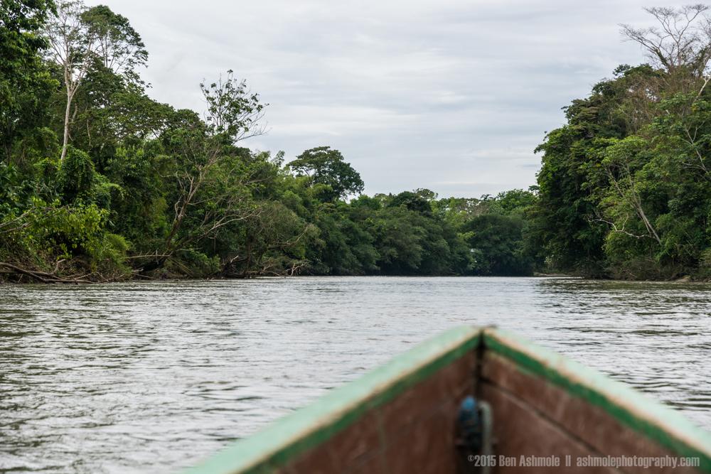 Boat Ride 2, Amazon Rainforest, Tena, Ecuador