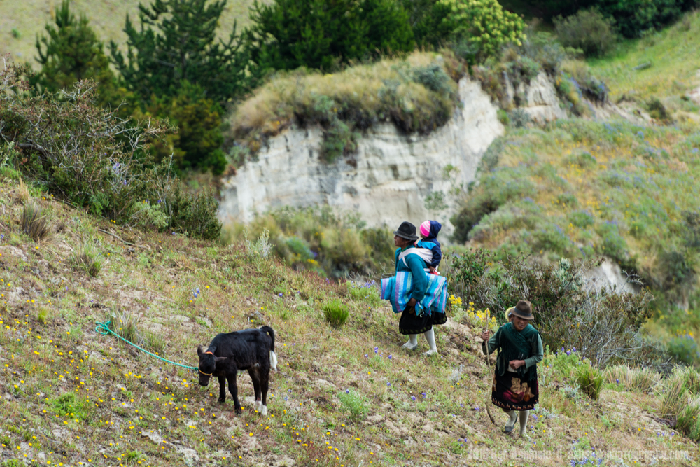 Local Shepherds 2, Quilotoa Loop, Ecuador