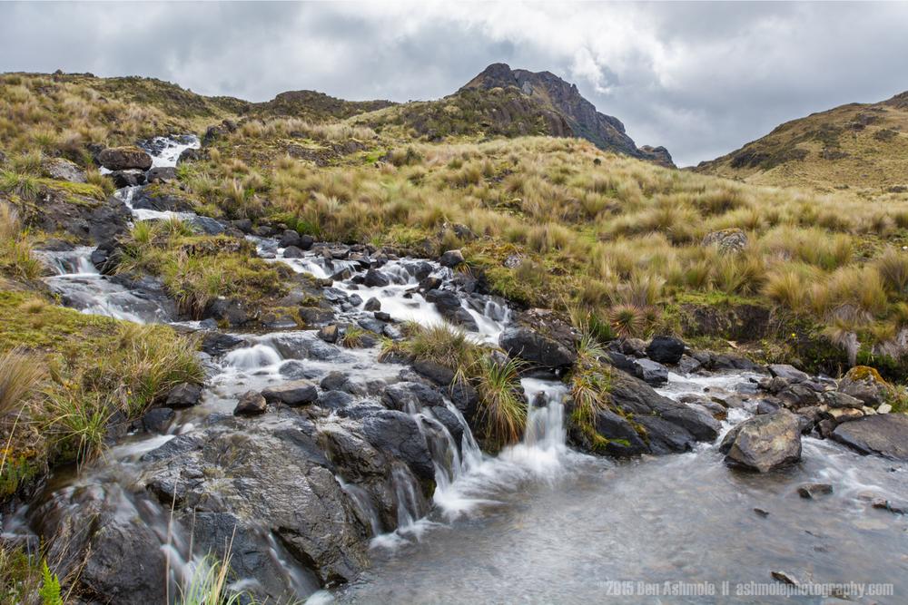 Cajas National Park 8, Ecuador