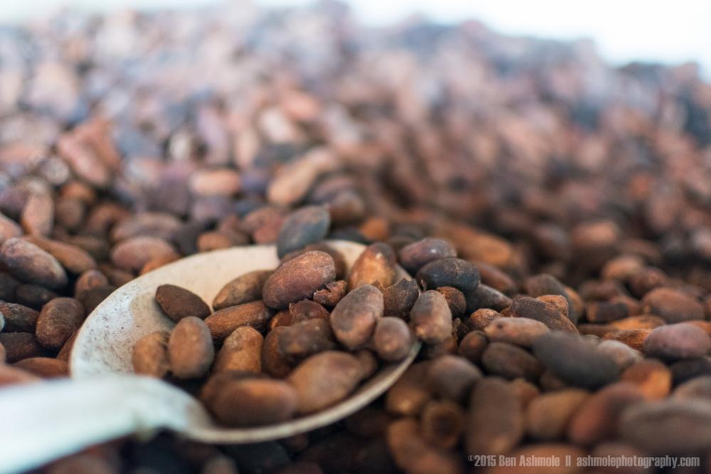 Fresh Cacao 2, Tena, Ecuador