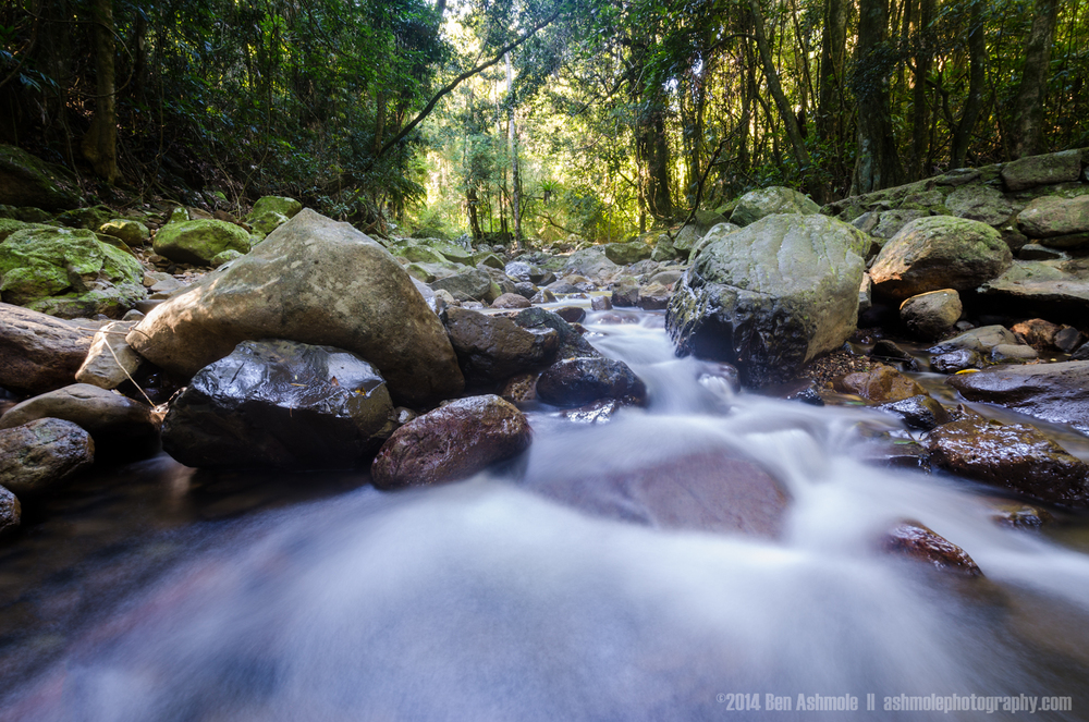 Stream In Motion, Springbrook National Park, Queensland, Austral