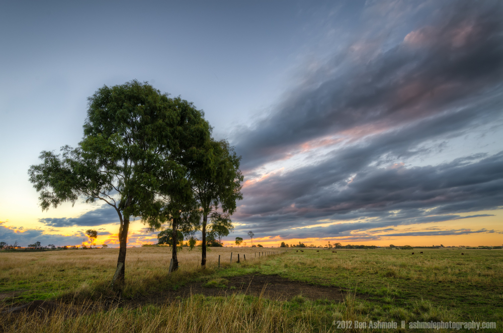 Farmland Sunset, Bundaberg, Queensland, Australia, Ben Ashmole