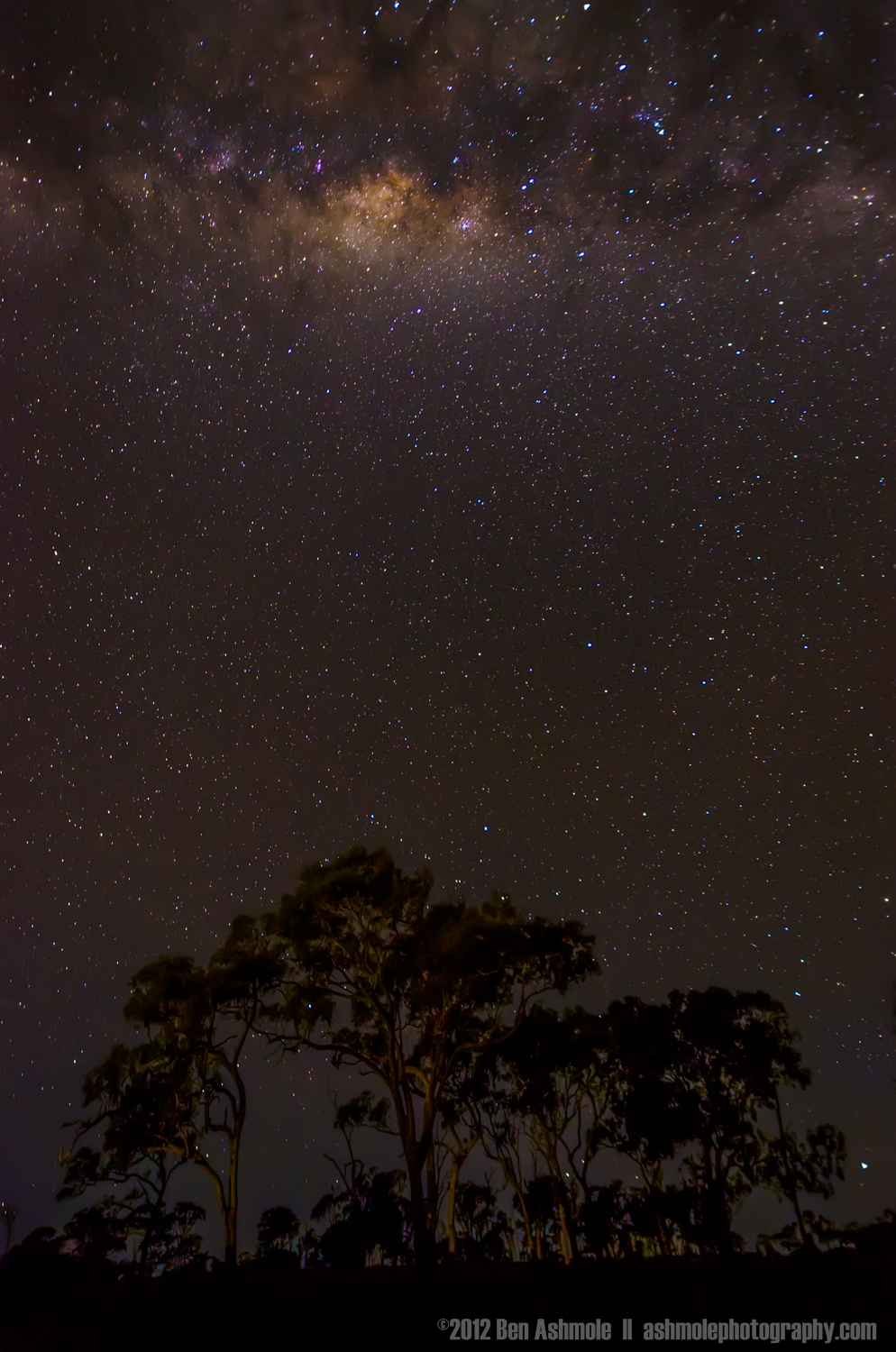 It's Raining Stars, Elliot Heads, Queensland, Australia, Ben Ash