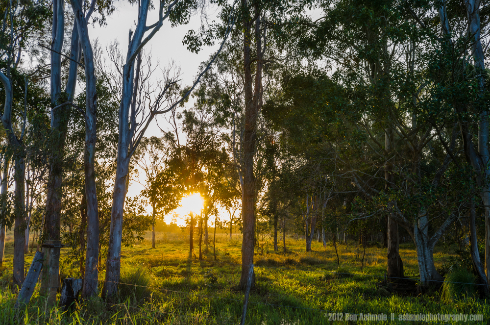 Morning Light, Queensland, Australia, Ben Ashmole