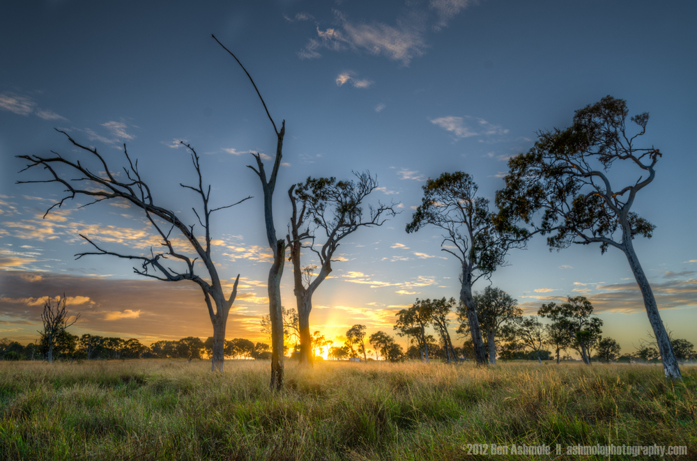 Good Morning Queensland, Elliot Heads, Australia, Ben Ashmole