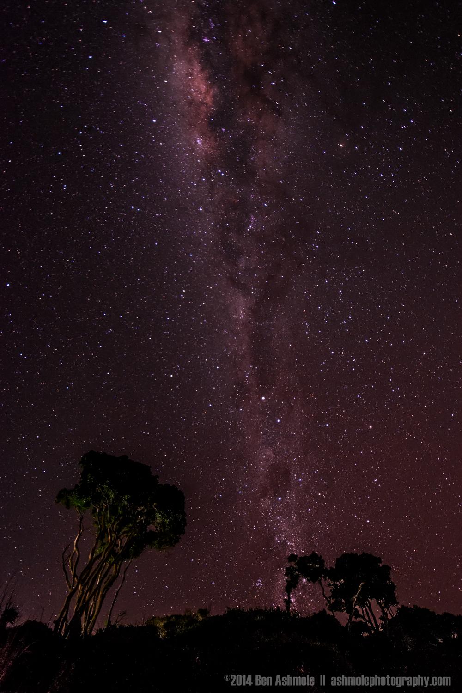 Milky Way, Clarke's Beach, Byron Bay, Australia