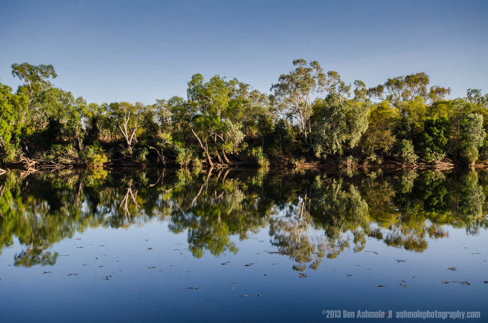 Forest Reflection, Katherine Gorge, NT, Australia