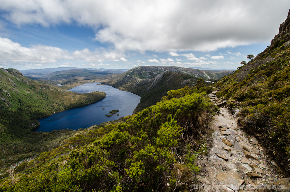 Path To Cradle Mountain, Tasmania, Australia