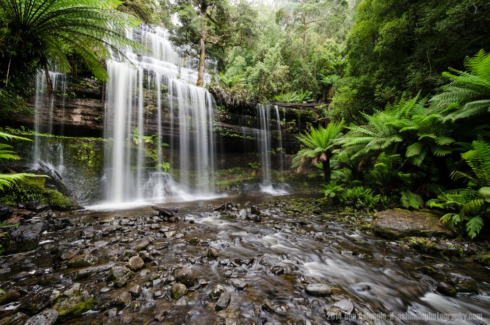Russell Falls, Mt Field National Park, Tasmania, Australia